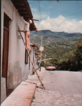 andes worker on a ladder.jpg